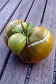 Tomate Evergreen (Bildquelle: Henry)
