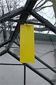 Gelbtafel im Glashaus (Bildquelle: Henry)