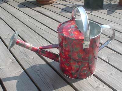 Gießkanne im Tomaten-Design (Bildquelle: Henry)
