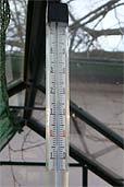 Thermometer im Glashaus (Bildquelle: Henry)