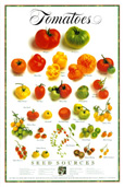 Tomatenposter (Bildquelle: Alice Waters)