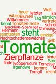 Schlagworte bei Tomatl.net (Bildquelle: Wordle.net)